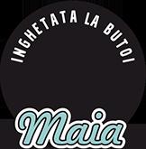 Logo-Butoiul-cu-Inghetata